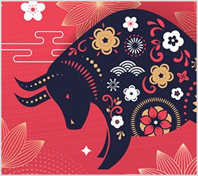 Happy Chinese New Year from the team at Pressure Tech